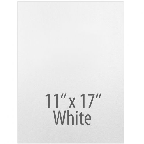 "Vinyl Report Covers [11"" x 17"", No Window, Square Corners, Unpunched, White] (100 Covers / Box) Item#030206WHHH"